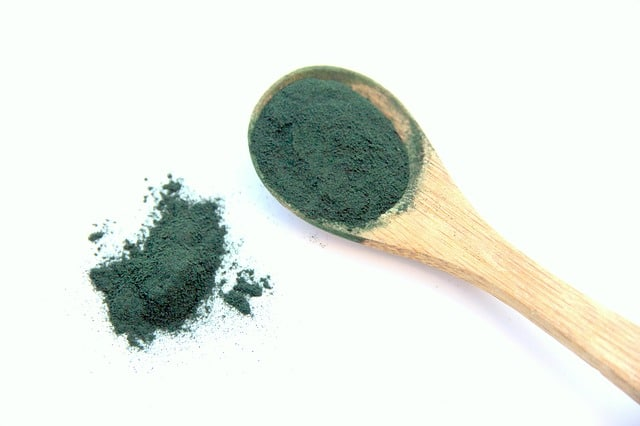 spirulina, alga, vegetable proteins