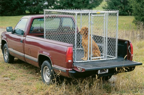 Portable Chain Link Kennel