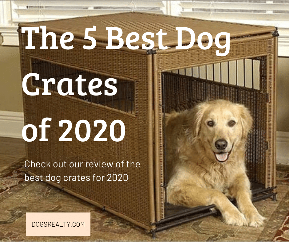 The 5 Best Dog Crates of 2020